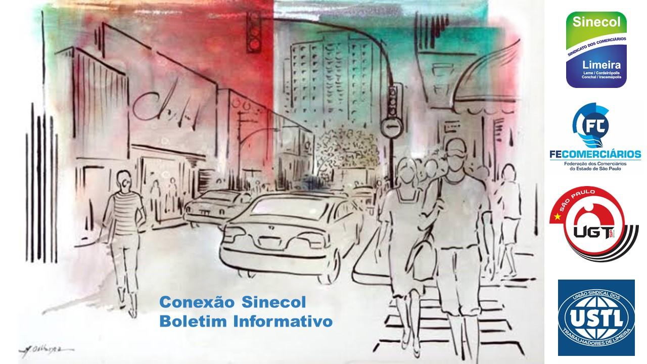 Boletim Informativo Conexão Sinecol